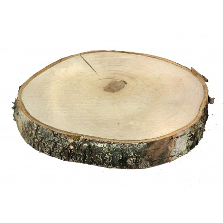 WOODEN SLICE 25-30CM THICKNESS 4CM